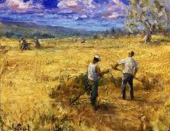 Косачи в полето - Mowing the field